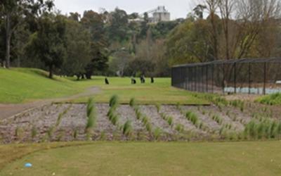 Queens Park Golf Club 13th Hole