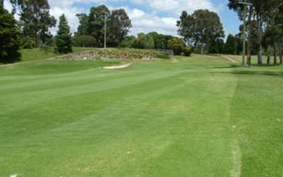Queens Park Golf Club 14th Hole