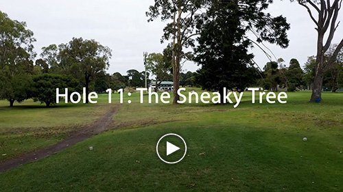 Hole 11 The Sneaky Tree
