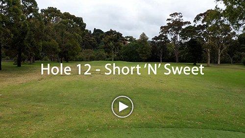 Hole 12 Short 'N' Sweet